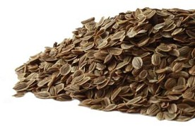 Dill Seed is another low priced organic spice at Organic Teas Canada.  Excellent quality botanical material, non-GMO, with no irradiation, no sulfites and no fillers.