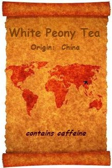 Our organic White Peony Tea originates in China and is featured on an old world map.  This cost effective tea, fresh and fragrant is picked when the buds and leaves are young producing a mild and sweet taste in this Organic Teas Canada White Tea favourite.