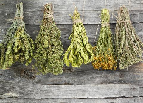 A lovely photo greets you on this Herb Page of five bundles of assorted dried herbs hanging upside down on a weather beaten barn wall.  Organic Teas Canada is pleased to offer fresh and fragrant organic herbs which are non GMO, non irradiated, contain no sulfites (sulphites) and are free of sanitary gases.