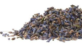 Beautiful purple lavender buds are pictured on a white background in this organic fresh dried herb offering from Organic Teas Canada dot com.